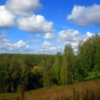 Пейзаж :: оля san-alondra