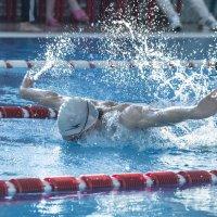 swimmer :: Dmitry Ozersky