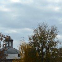 Пролетавший мимо самолет :: Виктория Большагина