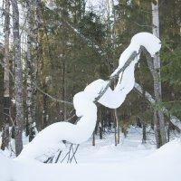 снежная змейка :: Мансур Хаснутдинов