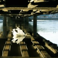 Под мостом. :: сергей лебедев