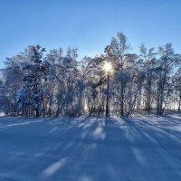 Ещё крепок зимний день! :: Serz Stepanov