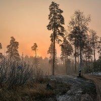 утро :: Александр Тулупов