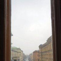 Окна Эрмитажа :: Юлия Кондратьева
