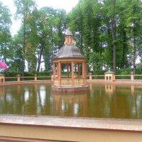 Летний сад :: Агриппина