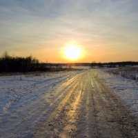 По золотой дороге к солнцу. :: Hаталья Беклова