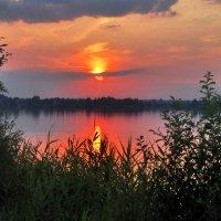 Июльский закат :: sergej-smv