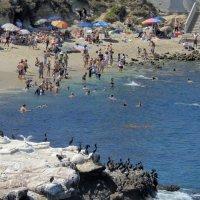 пляж у Сан-Диего :: Алексей Меринов