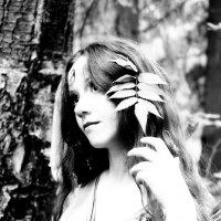Лесная фея :: Белла Витторф