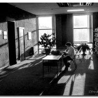 В тиши библиотеки :: Сергей Шруба