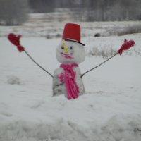 Спасите-весна наступила ! :: nadyasilyuk Вознюк