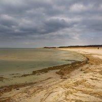 Весной на заливе :: Виталий Латышонок