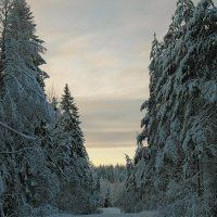 Зимний вечер :: Олег Пученков