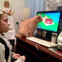 Наш кот Симка и его друг компьютер :: Тамара