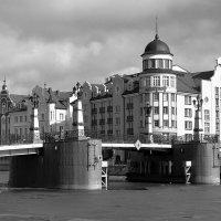 Весна на реке Преголе :: Сергей Карачин