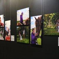 Выставка) :: Nadezhda Ulitina