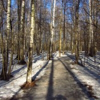IMG_3346 - Процесс пошел! :: Андрей Лукьянов