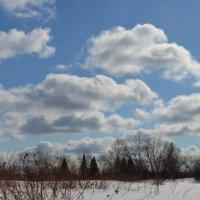 Весенние облака :: Вера Андреева