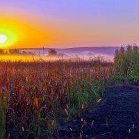 солнце встает.. :: юрий иванов