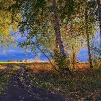 Осень вблизи Н-Спасского :: Александр Тулупов