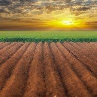 Земля,луга,небо. :: михаил