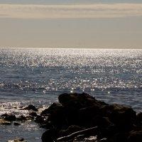 Море :: Serega Денисенко