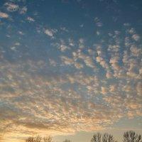 Прожигающий закат.. :: Юрий Анипов