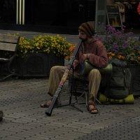 уличный музыкант :: Сергей Цветков