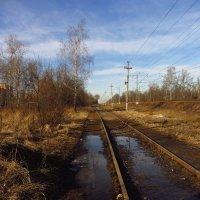 Img_3474 - Новодачная :: Андрей Лукьянов