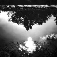 Купание солнца :: Валерий Талашов