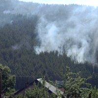 Пожар в горах. :: Вера Щукина