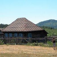 Дом в деревне. :: Вера Щукина