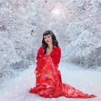 Зимний лес :: Анжелика Маркиза