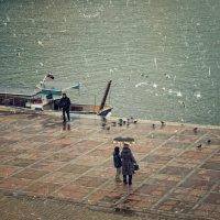 Морские прогулки :: Ольга Мальцева