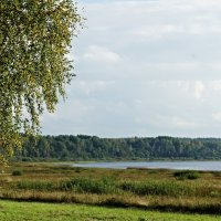 Озеро Кучане (Петровское) :: Елена Павлова (Смолова)