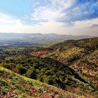 Север Израиля... :: Alex S.