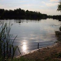 наше озеро у дачи :: Лидия кутузова