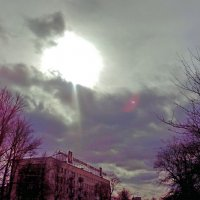 Солнечное затмение в Петербурге :: Алла Aпшиник