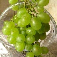 веточка винограда :: Елена Семигина