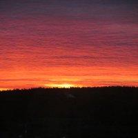 Восход солнце :: Екатерина Сокова