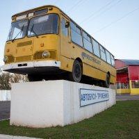 Автобус :: Оксана Пучкова