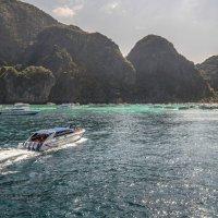 мангровые острова :: Дамир Белоколенко