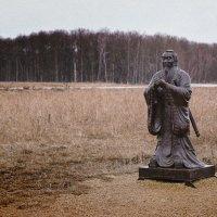 В поле :: Денис Тарасов