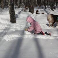 Успеем еще слепить снеговичек? :: Ольга