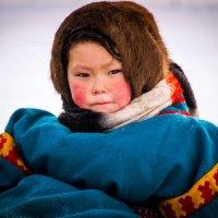 А мороз все крепчает... :: Константин Ольховка