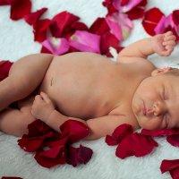 Рождённая с любовью :: Лариса Захарова