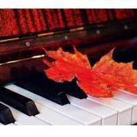 Музыка — самое поэтическое, самое могущественное, самое живое из всех искусств. :: Любовь Кастрыкина