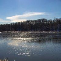 Весенние заморозки :: Александр Кореньков