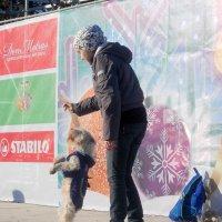 Танец с собакой :: Нина Бутко