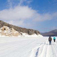 Идём по льду :: Владимир Веселов